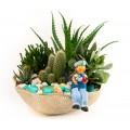 Aranjamente cu plante