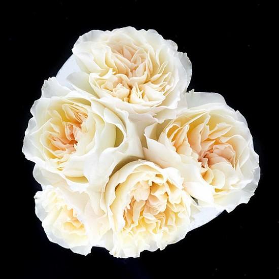 Aranjament Stone Heart cu trandafiri Eugenie