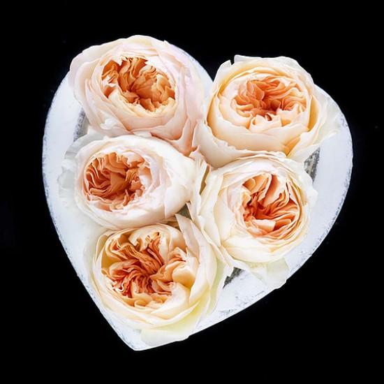 Aranjament Stone Heart cu trandafiri David Austin Juliet
