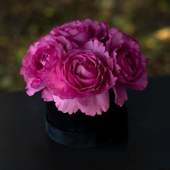 Cutie cu 5 Trandafiri Yves Piaget